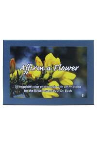 Affirm a Flower - Bach - English