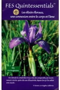 FES Quintessentials brochure - French language
