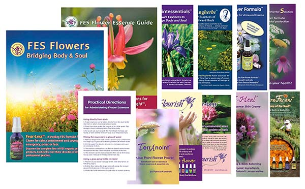 FES Product Brochures